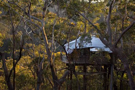 Tree Top Cabins Qld by Cabins Home 1