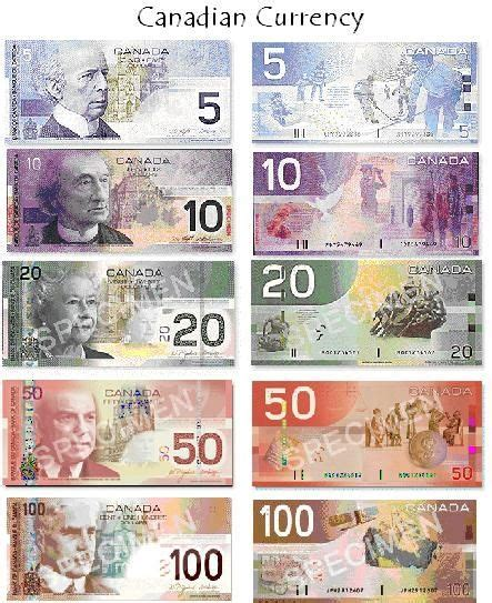 free printable fake canadian money pic of canadian money could use in flash cards etc