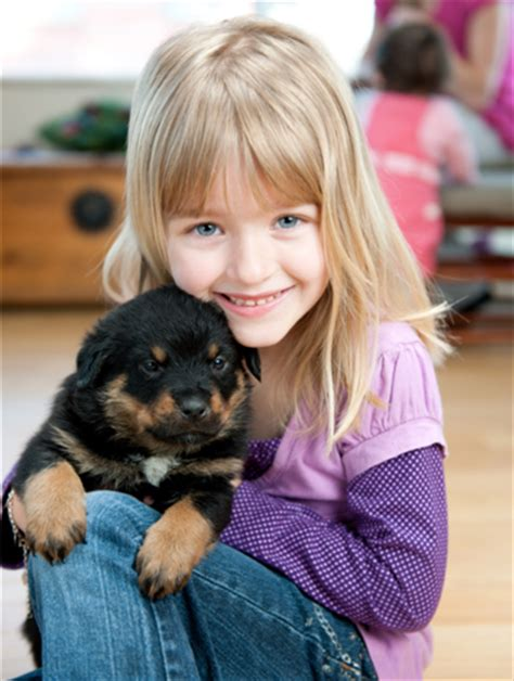 puppies and toddlers and puppies safety and responsibility