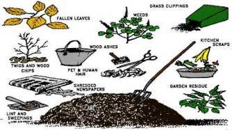 Wood Chips Landscaping by Chapter 2 Composting Fundamentals Earth Kind 174 Landscaping