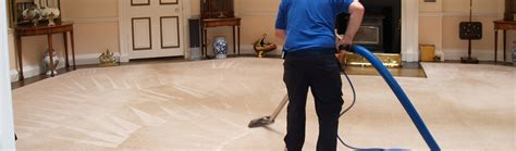 rug cleaning adelaide carpet cleaning adelaide adelaide s best steam cleaning