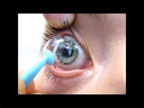remove airflex hybrid contact lens youtube