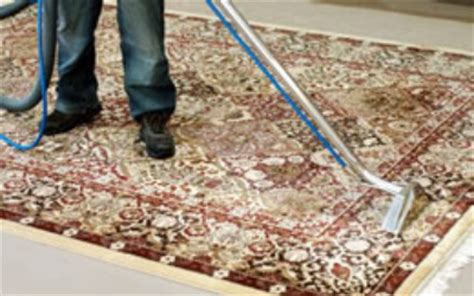 Rug And Carpet Cleaning by Carpet Cleaning Scottsdale Az