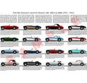 Austin Healey 100 100/6 3000 Model Chart Poster BMC 100M 100S BN1 BN6