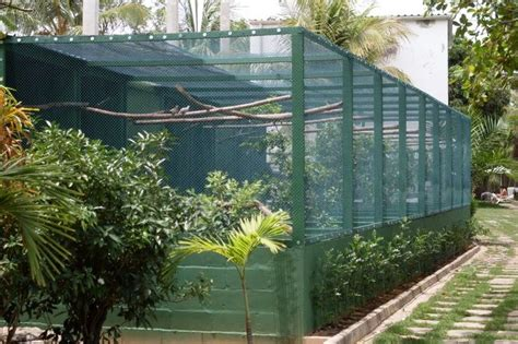backyard bird aviary aviary designs cage and aviary ideas pinterest bird