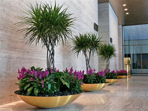 Interior Plantscaping by Interior Plantscape Silversandservices