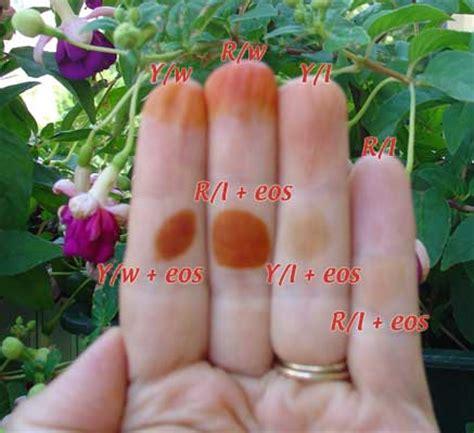 henna tattoo farbe selber machen henna selber machen rezept einer henna paste zum