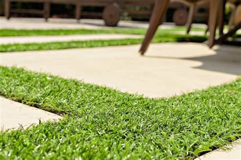 cost to sod backyard 2017 resodding lawn costs resodding price factors