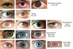 human eye color chart the eye color chart eye color chart human eye and eye