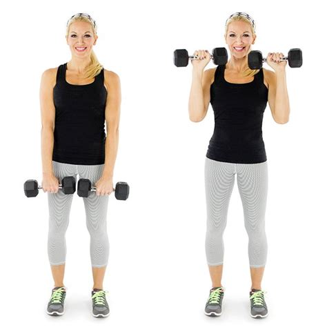 Bicep Free Weight bicep curl weight exercises and free weights