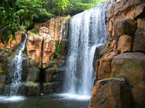 Oregon Gardens Resort by Sun City Waterfall Photograph South Africa Travel