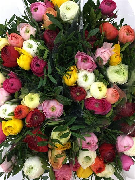 fiori ranuncoli bouquet ranuncolo e lentisco elemflora