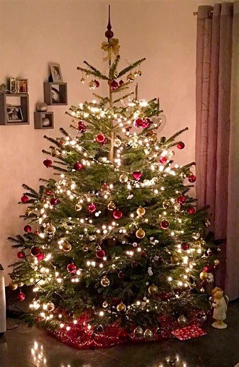 weihnachtsbaum bild startseite best bottrop