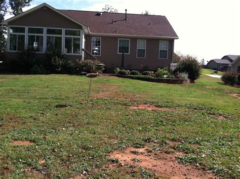 retention pond in backyard 100 retention pond in backyard 10 things you must