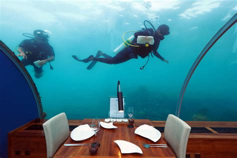 ithaa undersea restaurant prices 10 photos ithaa undersea restaurant in the maldives