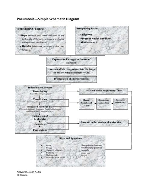 pathophysiology of pneumonia diagram pathophysiology of pneumonia schematic diagram