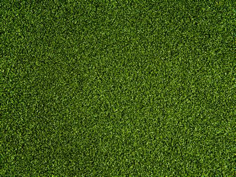 Green Grass by Artificial Putting Greens Supplied Installed By Nomow