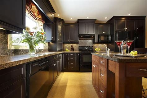 dark kitchen cabinets ideas 18 kitchen designs incorporating dark rta cabinets