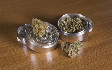 what is a what is a marijuana grinder how do you use it leafly