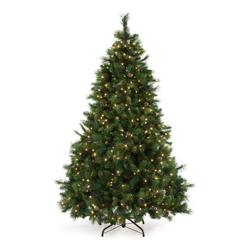 keyser pine christmas tree 25 best ideas about 12 ft tree on 12 foot tree tree