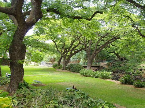 Botanical Gardens Wiki Liliuokalani Botanical Garden