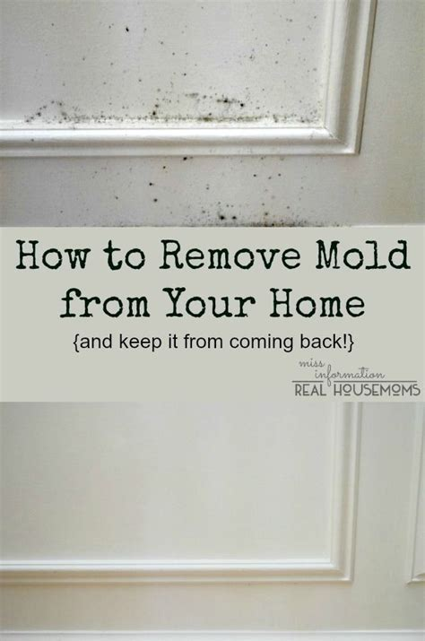 what to use to clean mold in bathroom 25 best ideas about mold in bathroom on pinterest