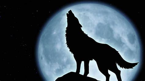 imagenes hd lobos hombre lobo aullando 1920x1080 hd fondoswiki com