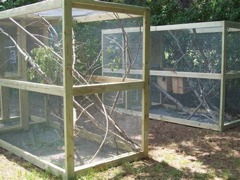 outdoor pens outdoor squirrel cages projects to try