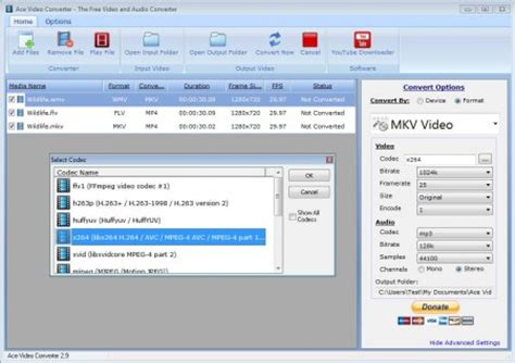 format file ace free video and audio converter ace video converter