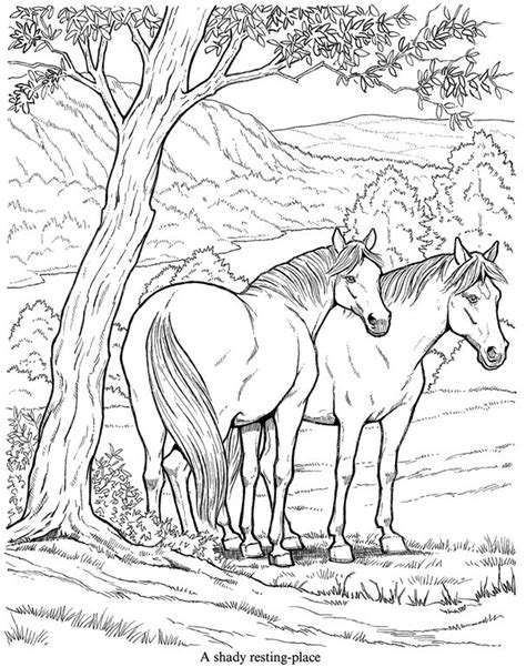 herd of horses coloring pages 25 best ideas about horse coloring pages on pinterest