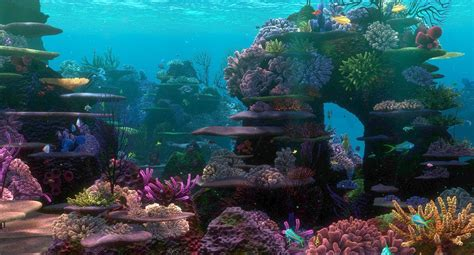 aquarium design wallpaper finding nemo coral reef aquarium background aquarium