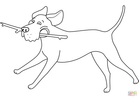 labrador coloring pages labrador retriever running with stick coloring page