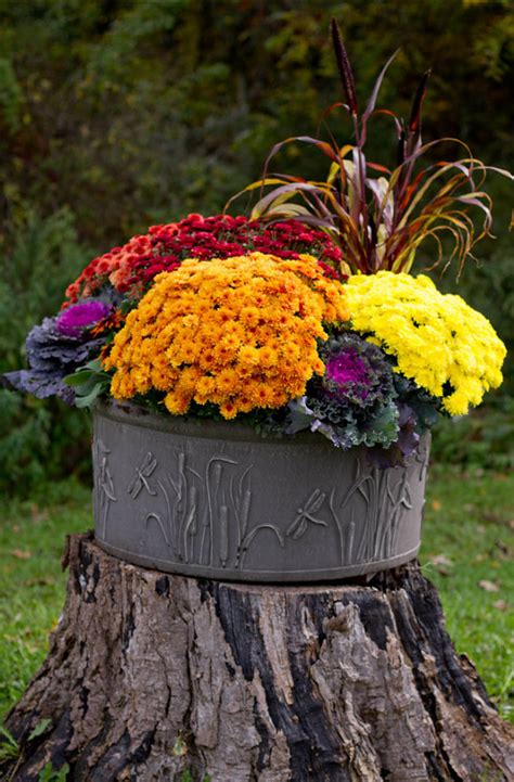 Easy Planter Ideas by Easy Thanksgiving Decorating Ideas Home Bunch Interior Design Ideas