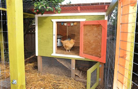 backyard chickens coop plans file seattle chicken coop with enclosed run jpg