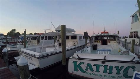 charter boat fishing solomons island solomons maryland chesapeake bay fishing bunky s