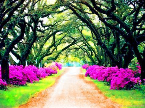 imagenes bellas paisajes naturales 5 hermosas fotos de paisajes fotos paisajes hermosos