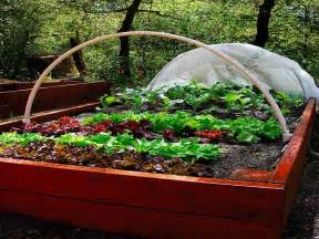 gardening amp landscaping raised garden box garden box design ideas grow box container gardens