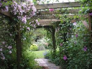 Climbing Flowers For Pergolas by Pergola With Climbing Flowers Backyard Pinterest