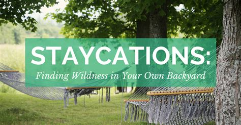 Can You Find Gold In Your Backyard by Staycations Finding Wildness In Your Own Backyard We