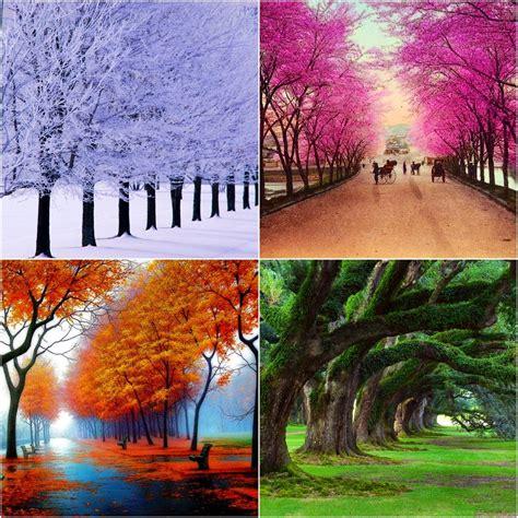 Season To Season 197 l e x e p 198 d i a four seasons 197 lexisxe 252 rik