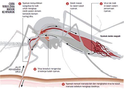 Pasaran Tirai Anti Nyamuk Produk Anti Nyamuk Paling Uh Berbentuk Semprotan