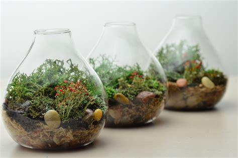 Miniature Dekorasi Terarium Garden Glazzing terrarium aquarium untuk tanaman rooang