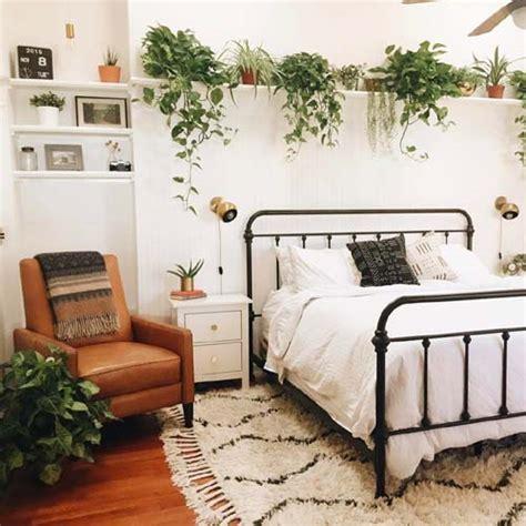 piante da letto monday green inspo le piante per la da letto