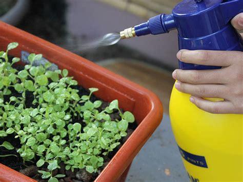 home  safe pesticides   garden boldskycom