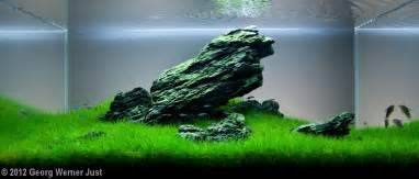 2012 aga aquascaping contest entry 189
