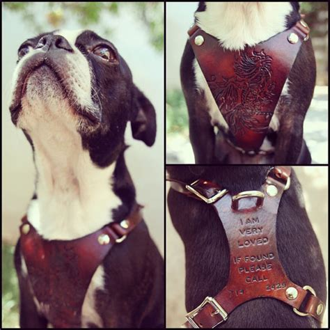 Handmade Leather Harness - leather harness custom leather tooled by exsect