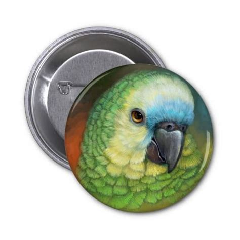birdorable blue fronted parrot pinback button parrot