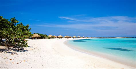 divi di a stunning paradise in caribbean aruba all about