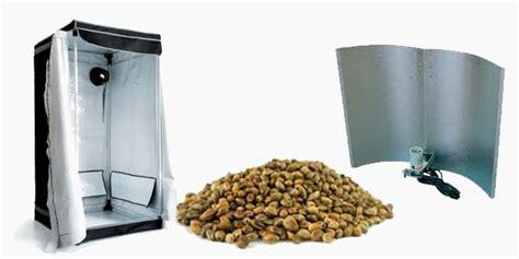 semillas de marihuana interior semillas de marihuana para cultivo interior semillas de