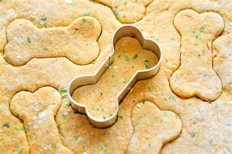 is zucchini for dogs 22 diy organic treat recipes